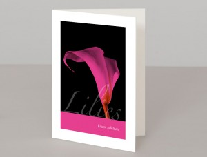 Lilies A5 Greetings Card